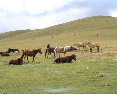 potovanje Kirgizija
