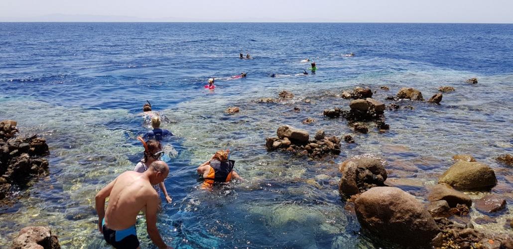 Snorklanje v rdečem morju