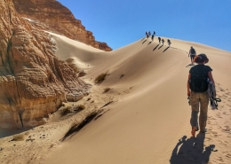 Sinajska puščava