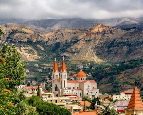 Libanon-cedre