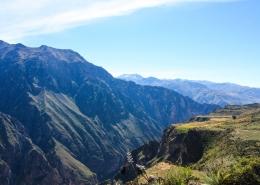 Kanjon Colca, Peru