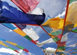 Molilne zastavice, Himalaja