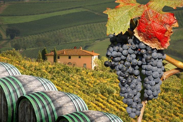 Vinorodna pokrajina Umbrija