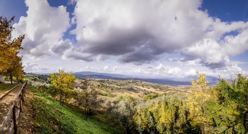 Montefalco Panorama