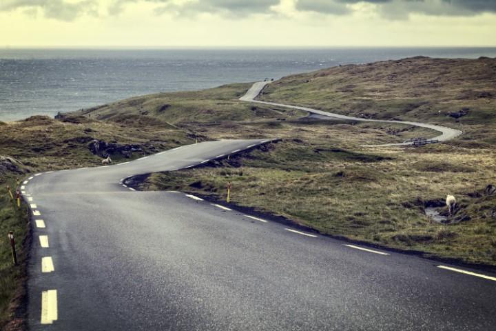 Ferske ceste