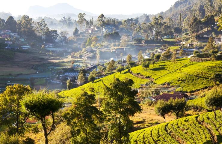 Panorama Šrilanke