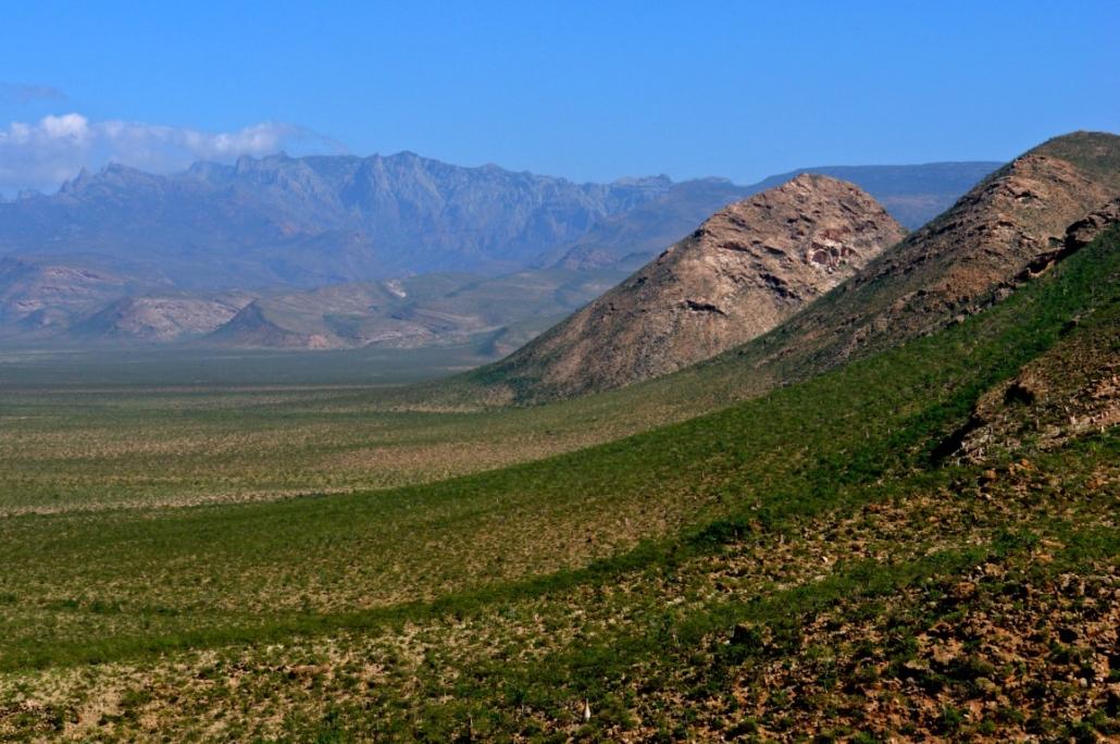 Gorska Sokotra