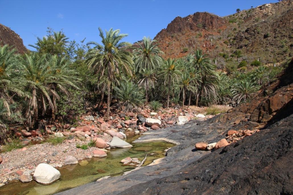 otok Sokotra